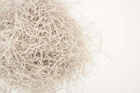 outwit: Paper strips from a shredder Stock Photo