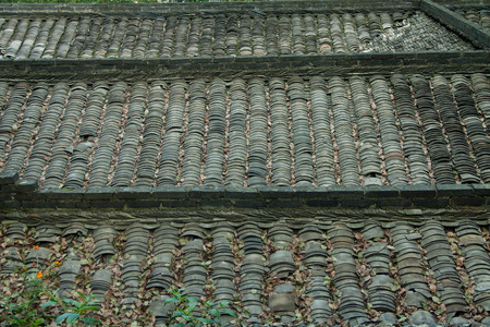 Leaves on the roof tiles