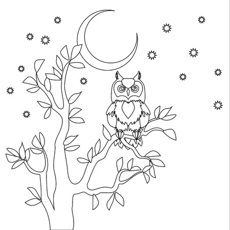 Cute vector owl. Coloring book. Owl sitting on the tree at the night.