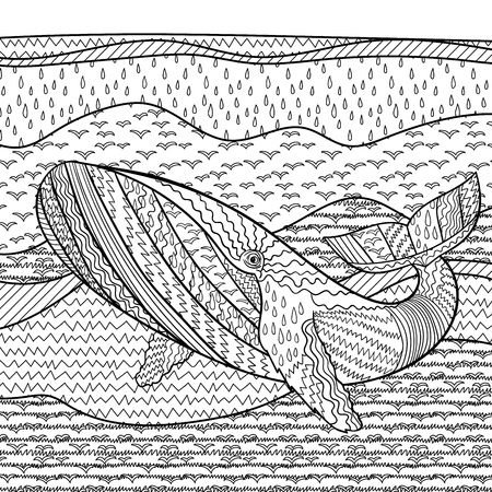 color: Hand drawn whale in the waves for anti stress coloring page with high details, isolated on blur background, illustration in zentangle style. Vector monochrome sketch. Marine collection.