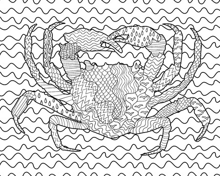 oceanic: Sea crab with high details. Adult antistress coloring page. Black and white hand drawn doodle oceanic animal. Sketch for tattoo, poster, print, t-shirt in
