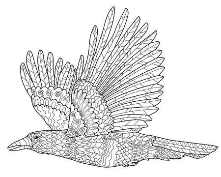 cuervo: Cuervo que vuela con altos detalles. Adulto anti-estr�s para colorear con el cuervo. Negro blanco dibujado mano del doodle de aves. Boceto para el tatuaje de impresi�n de carteles, camiseta en cuesti�n de estilo tracer�a. Ilustraci�n del vector.