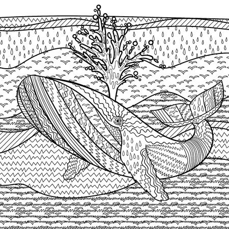 dibujos para colorear: Dibujado a mano ballena jorobada en las olas para la lucha contra el estrés para colorear con detalles altos, aislado en el fondo del modelo, la ilustración en estilo tracería. Ilustración monocromática del dibujo. colección marina.
