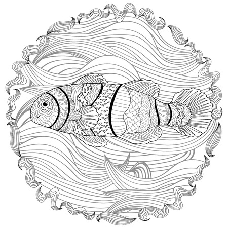 clownfish: Clownfish with high details. Adult antistress coloring page. Black white hand drawn doodle oceanic animal. Sketch for tattoo, poster, print, t-shirt in zentangle style. Vector illustration. Illustration