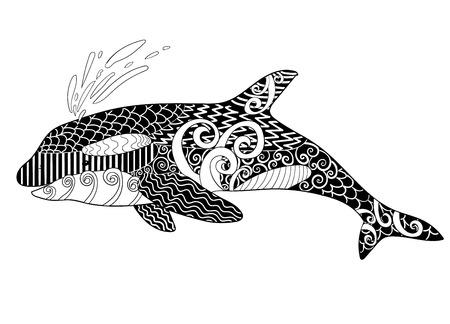 killer: Killer whale with high details. Illustration