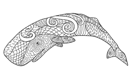 cachalot: Hand drawn whale for anti stress Coloring Page with high details Illustration