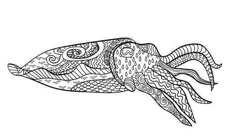 cuttlefish: Cuttlefish with high details. Illustration