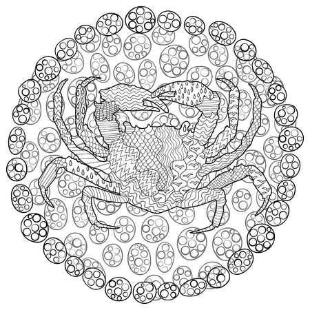 high sea: Sea crab with high details. Illustration