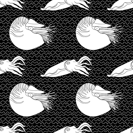 wrapping animal: Detailed seamless pattern with mollusks. Anti stress coloring page. Black white hand drawn zen doodle oceanic animal. Endless texture can be used for wallpaper, pattern fills, wrapping paper. Vector. Illustration