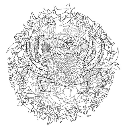 high sea: Sea crab with high details. Adult antistress coloring page. Black white hand drawn doodle oceanic animal. Sketch for tattoo, poster, print, t-shirt in tracery style. Vector illustration. Illustration