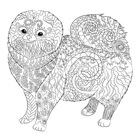 High detail patterned Pomeranian dog in style. Adult coloring page with a dog for antistress art therapy. Zendoodle template for t-shirt, tattoo, poster Vettoriali