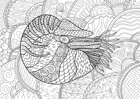 high sea: Nautilus with high details. Adult antistress coloring page. Black white sea mollusk. Abstract pattern with oceanic elements for relax coloring for grown ups in style.