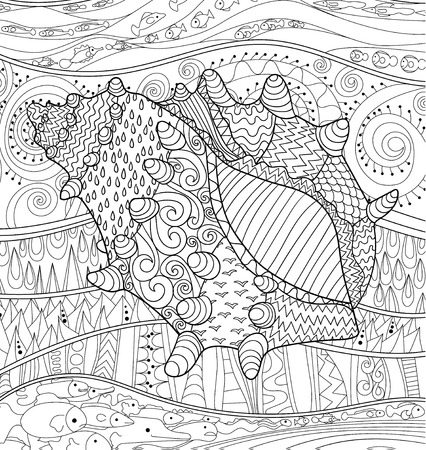 oceanic: Seashell with high details. Adult antistress coloring page. Black white oceanic object. Abstract pattern with oceanic elements for relax coloring for grown ups in zentangle style.