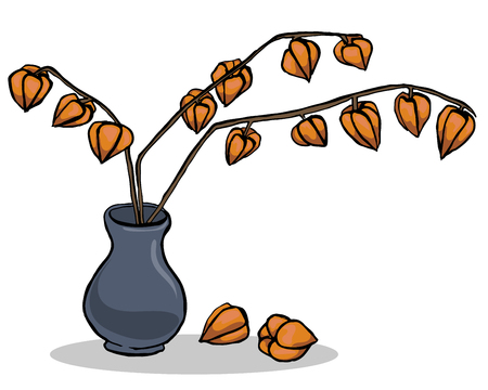 Autumn illustration with inflorescence physalis.