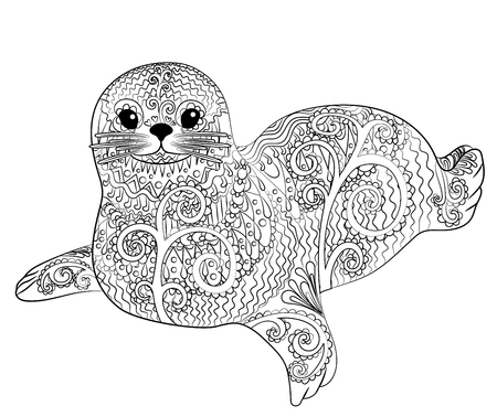 baby seal: Seal Vector illustration on white background Illustration