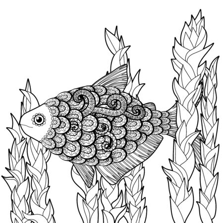 Bass fish with high details. Adult antistress coloring page. Black white hand drawn doodle oceanic animal. Sketch for tattoo, poster, print, t-shirt in tangle style. Vector illustration.