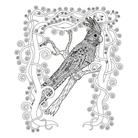 High detail patterned illustration intracery style. Adult coloring page for antistress art therapy. Parrot corella on the branch. Vector illustration.
