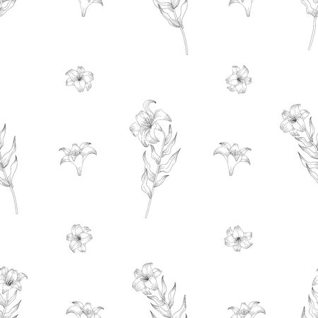 Seamless pattern with beautiful garden flowers - lilies. Coloring page with botanic objects for wrapping paper, cover of coloring book or textile design. Vector illustration