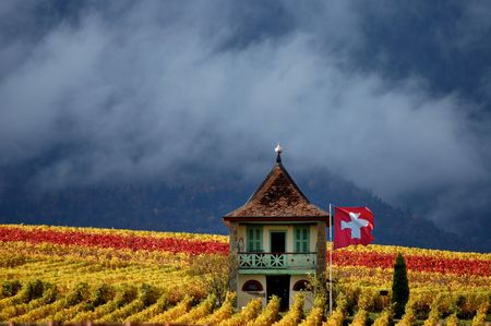 Small cottage with Swiss flag among the autumn colored vines of a mountain vineyard  with scudding clouds and forested mountains in the background.