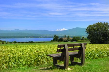 Summer View of Mount Blanc and Lake Geneva