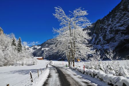 Alpine Valley Road
