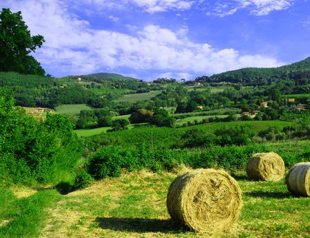 Country scene with harvested hay withgreen rolling hills in the background. Stock Photo