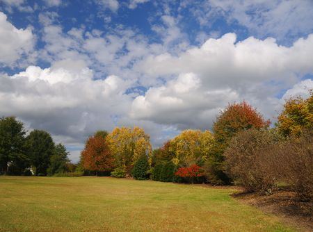 Autumn scene in a park with colorful leaves and dramatic sky.