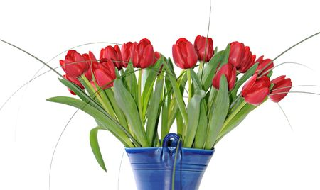 Bright Red Tulip bouquet isolated on a white background.