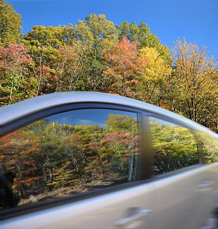 Car speeding through a beautiful Autumnally colored forest.