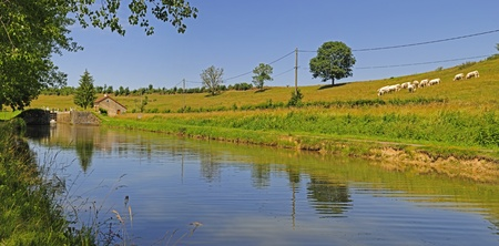 Burgundy canal in France showing a lock and Charlroi cattle. Stock Photo