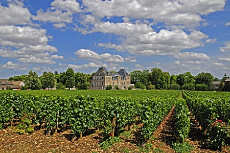 Vineyard and Chateau in Burgundy France under a blue summer sky.