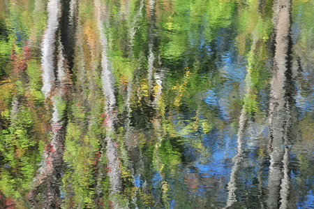 Abstraction: autumn tree foliage reflection in water 版權商用圖片