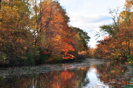 leaf color: New Jersey canal trail in autumn colors