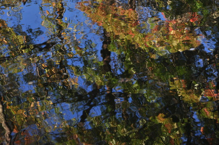abstraction: Abstraction: autumn foliage colors reflection in water