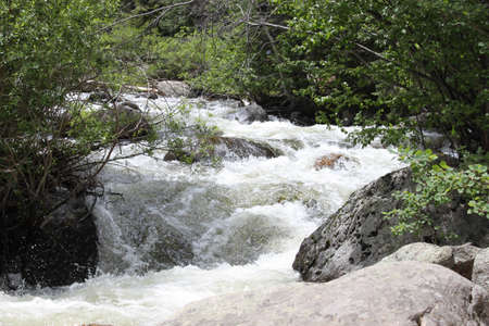 runoff: Summer run-off in the the Rocky Mountain National Park off of Bear Lake Road.