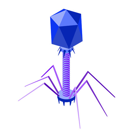Bacteriophage. Vector isometric illustration of phage virus. Isolated on white background 写真素材 - 123853265