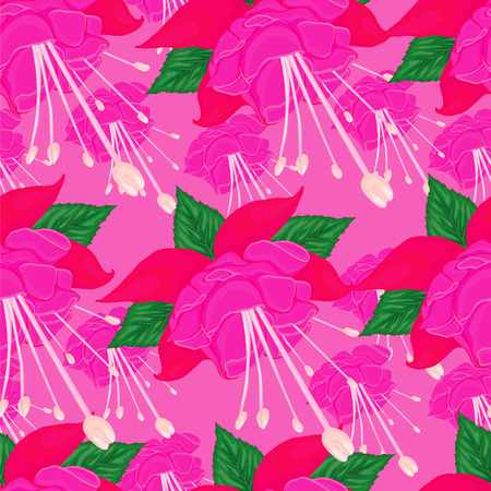stamen: background with pink background lilies.floral Illustration