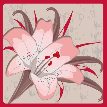 attrition: pink lily on a gray background in frame. Illustration