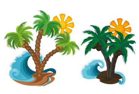 tide: summer.palm trees with the sun on a white background