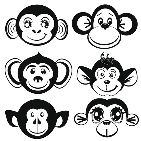 differently: Funny monkey differently. Face of monkeys.