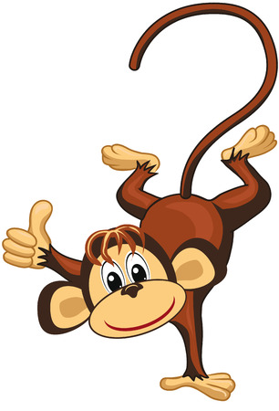 thumbsup: Funny monkey on a white background.Thumbs up.