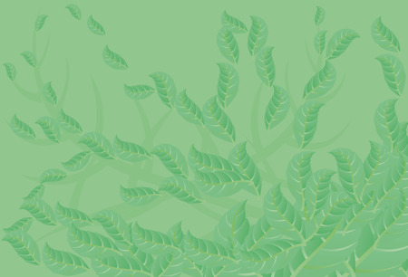 Abstract green background with leaf. Light green background.