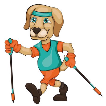 犬は、ノルディックウォー キングに取り組んでいます。漫画のスタイル。白い背景の分離のイメージ。子供のためのクリップアートします。
