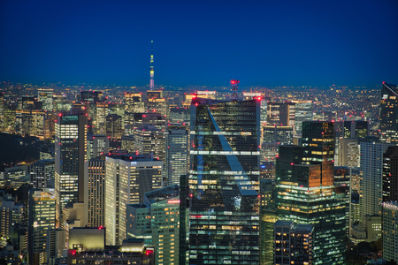 Photo of the view from roppongi hills of the city lights