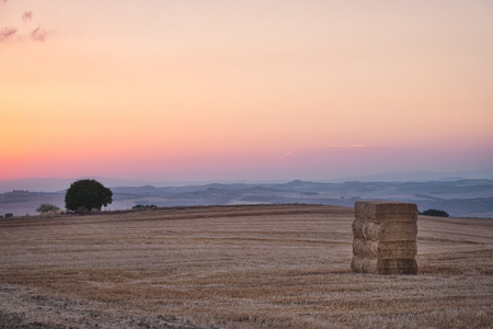 Photo of the field in toscana at the sunset time