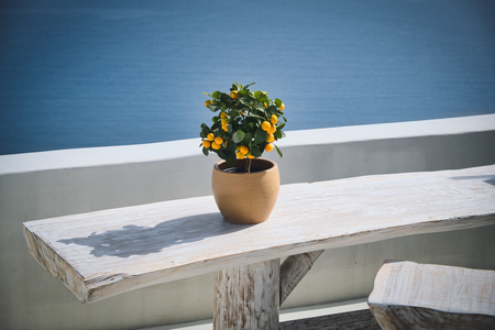 Photo of the fruit vase at the table with the Santorini View