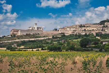 Photo of Assissi with sunflowers and the blue sky with clouds Stockfoto