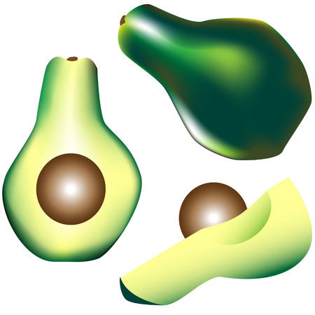 Textured vector illustration of a whole avocado with pit, slice, and wedge Vector