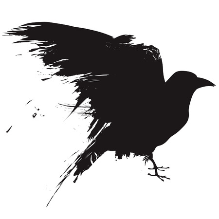 Vector illustration of the silhouette of a raven in grunge style. Ilustração