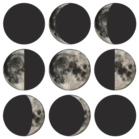 Phases of the moon vector illustration based on public domain image.